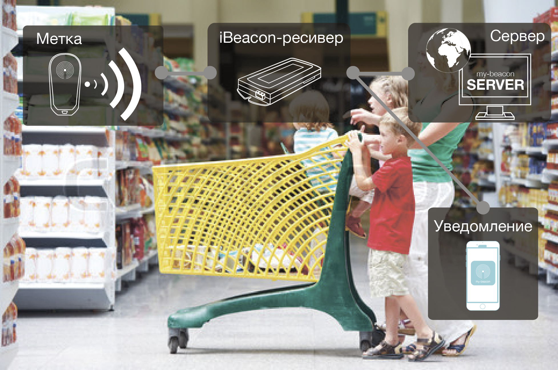 control-korzinok-v-supermarkete